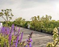 Spacious roof terrace of the Pool Penthouse Berlin-Tiergarten