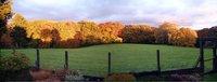 11 Panorama aus dem Garten