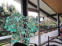 Zimmer mit Balkon 1. OG