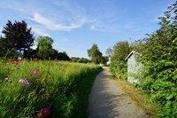 Gartenhaus und Zugang zum Garten vom Fussweg